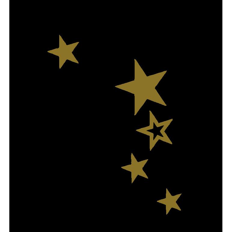 logo starissime